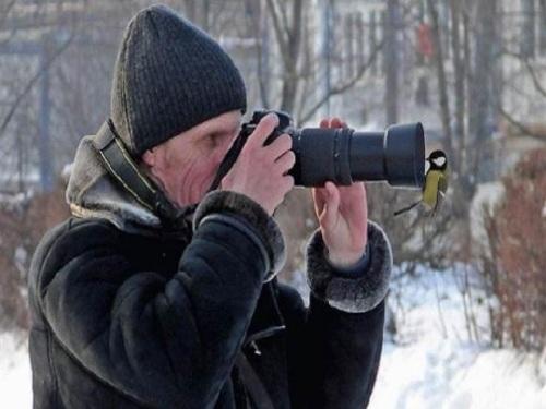 Bird looking in lens