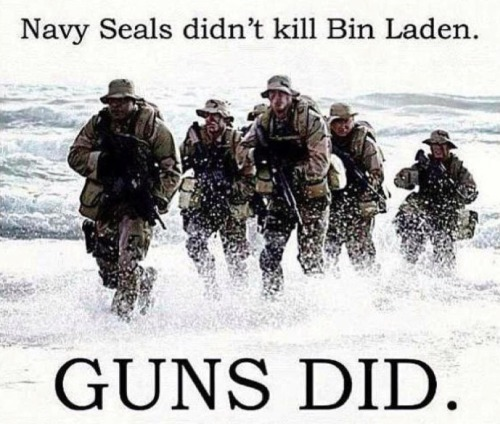 Navy Seals didn't kill bin Laden