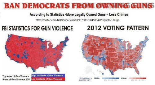 Ban Democrats from owning guns