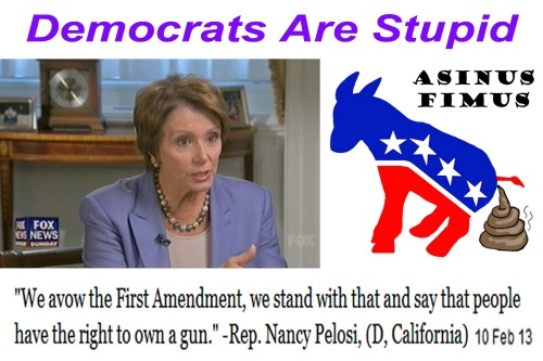 2013_02 10 Pelosi says gun right is first amendment