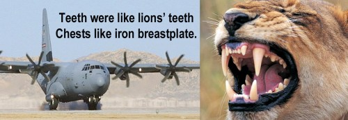 C-130 teeth and chest