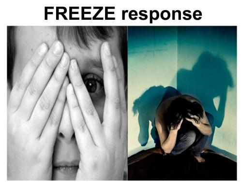 FREEZE response