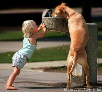 DOG BABY Kid and dog get a drink