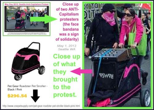 2013_05 01 Seattle Pet Stroller b