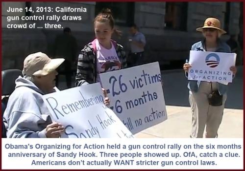 2013_06 14 OfA gun control rally a bust