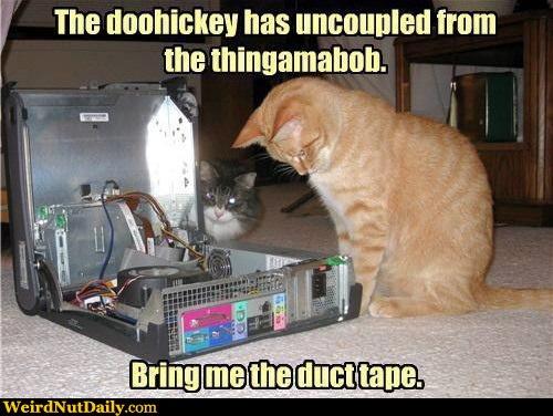 CAT Tech Cat