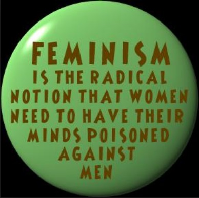 Feminism is the notion