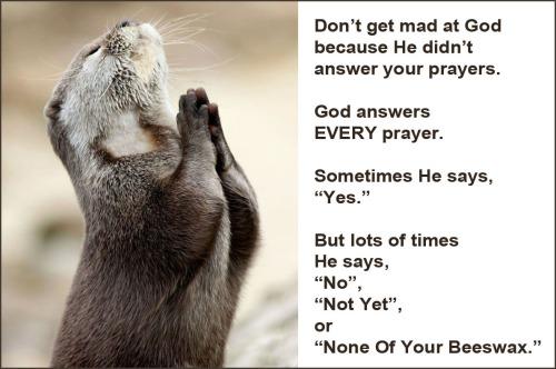 God answers every prayer