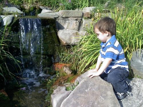2013_08 17 W at Botanical Gardens