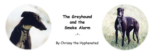 The Greyhound and the Smoke Alarm