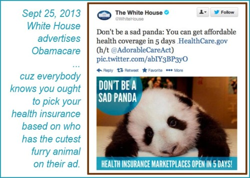 2013_09 25 WH Sad Panda Obamacare ad
