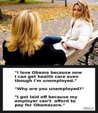 Obamacare love hate