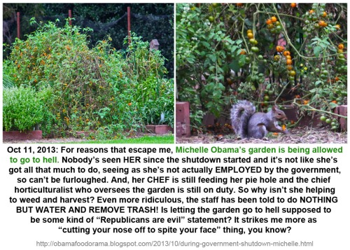 2013_10 11 Mooch's garden going to hell