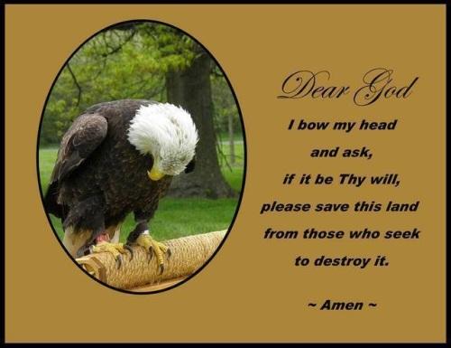 Dear God - eagle prayer