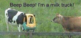 Halloween COW I'm a milk truck