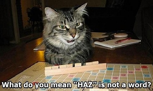 SCRABBLE CAT Haz is not a word