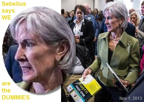 2013_11 01 Sebelius and Web Sites for DUMMIES