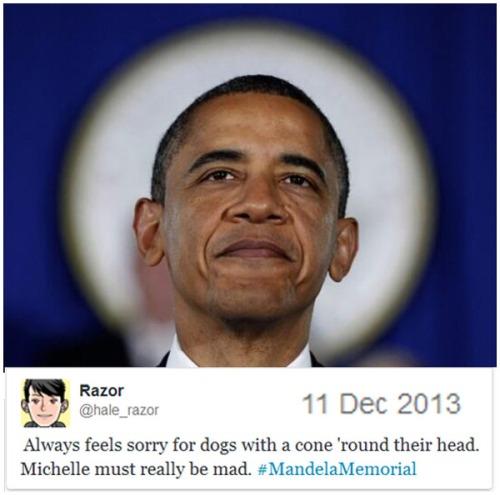 2013_12 11 BHO Cone of Shame