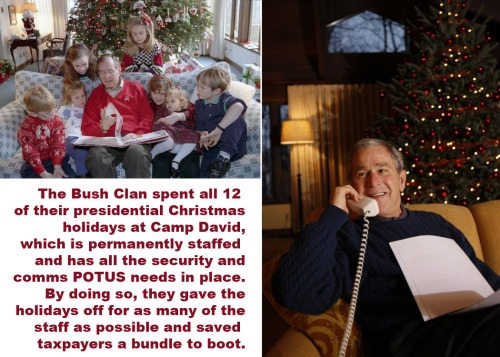 Bush Christmasses