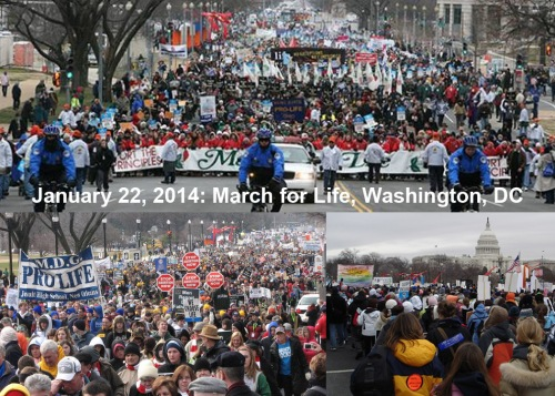 2014_01 22 March for Life montage