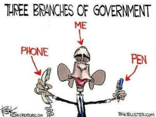 2014_01 BHO's 3 branches of government