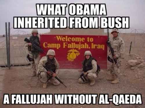 Fallujah without al Qaeda