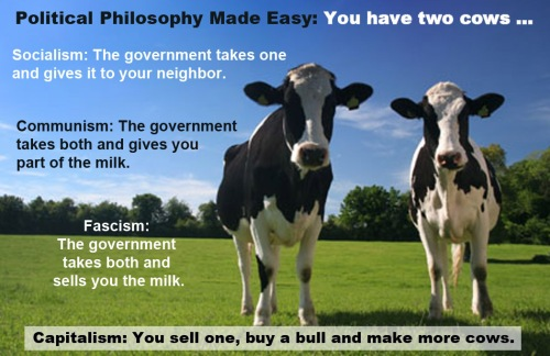 Political philosophy made easy - You have two cows