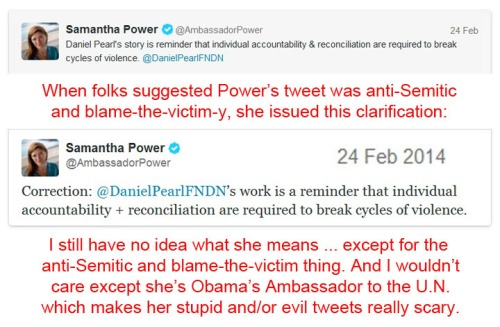 2014_02 24 Amb Power doubles down on stupid or evil