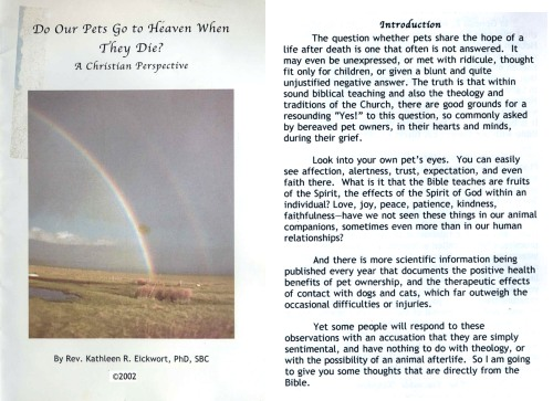 01 Do our pets go to Heaven when they die by Rev K Eickwort
