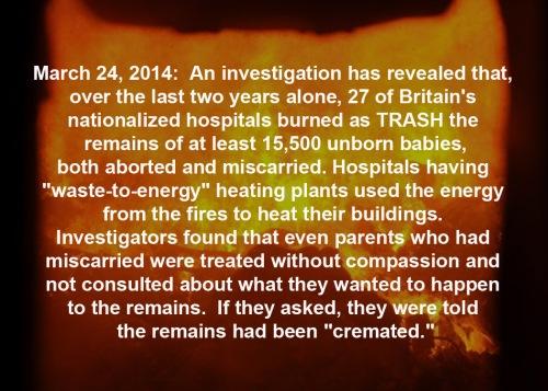 2014_03 24 UK hospitals burn babies as trash