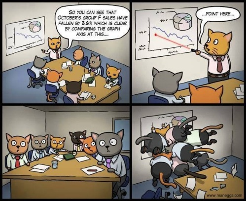 CATS Corporate Management