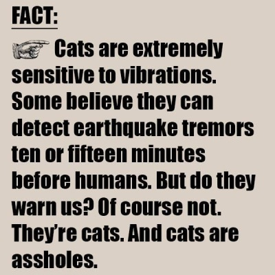 CATS earthquakes