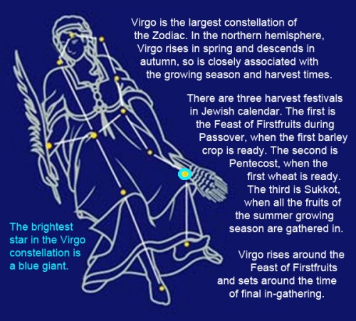 Virgo drawing and facts