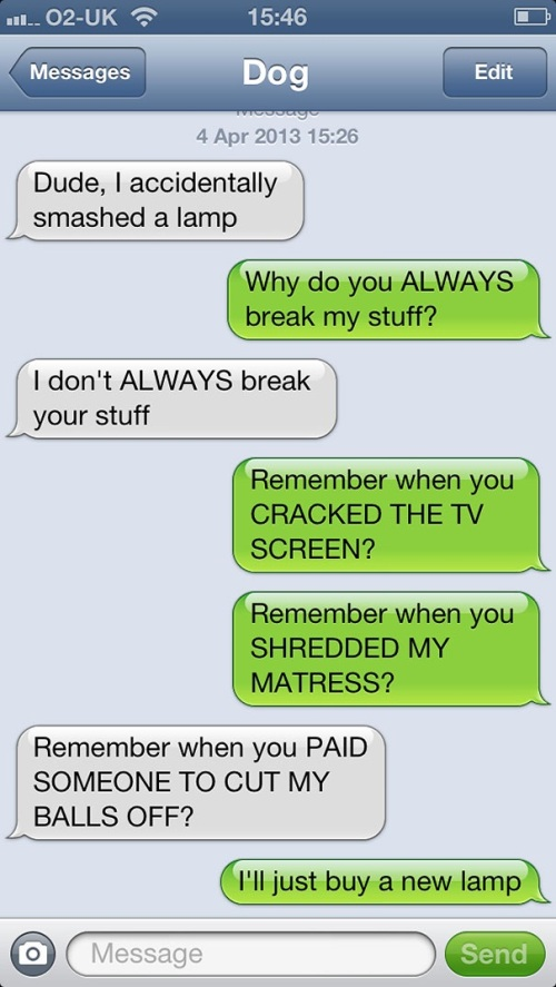 DOG Texting - breaking stuff