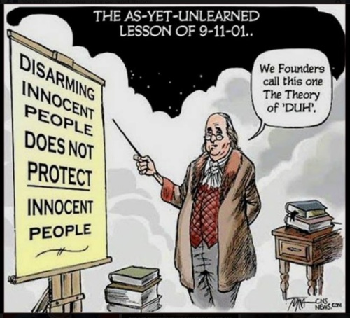 SECOND AMENDMENT The Theory of Duh