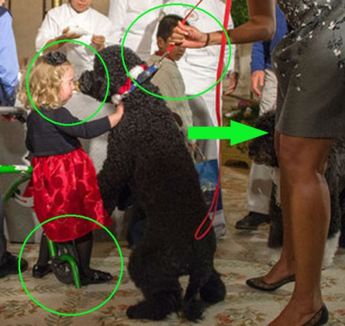 2013_12 05 Sunny Obama knocks down 2 year old cut