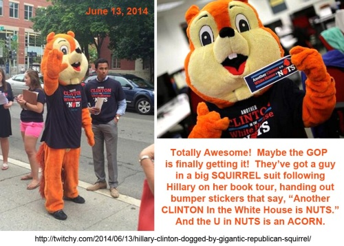 2014_06 13 Squirrel following Hillary's book tour
