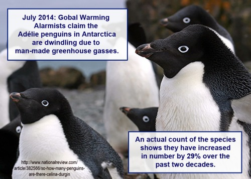 2014_07 Adelie penguin population increased 29 percent