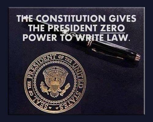 Constitution gives Prez zero power to write law