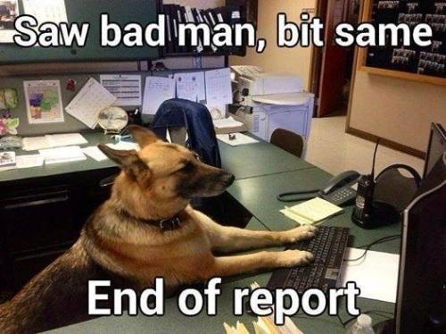 DOG K-9 police report