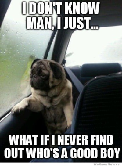 DOG What if I never find out
