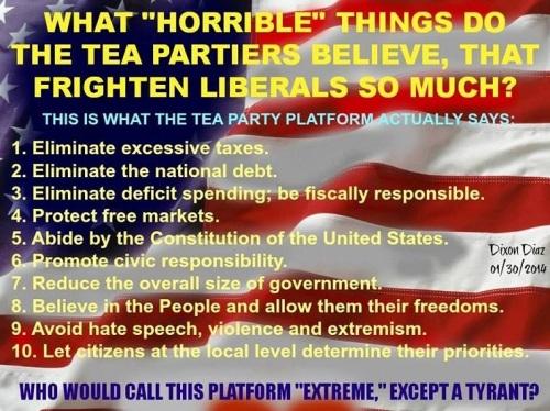 Tea Party platform