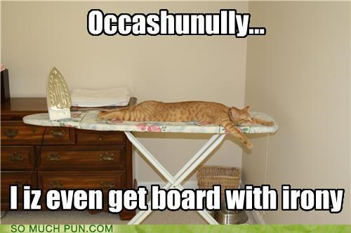 CAT board with irony