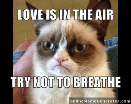 Grumpy-Cat-meme-275250e33aad8c0
