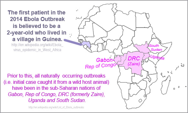 2014 Ebola - index case in Guinea