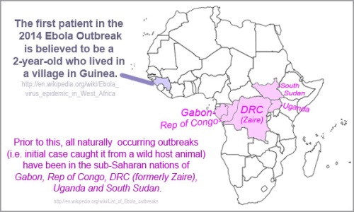 2014 Ebola - index case in Guinea