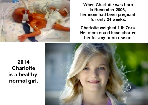 ABORTION Charlotte