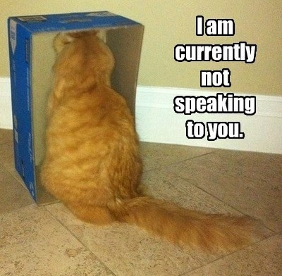 CAT not speaking to you