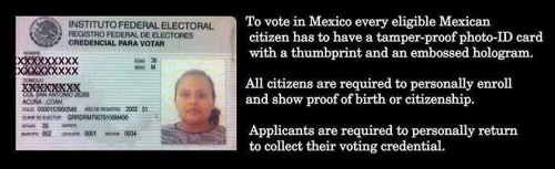 Mexican voter law