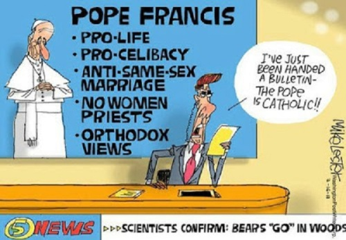 Pope is Catholic toon